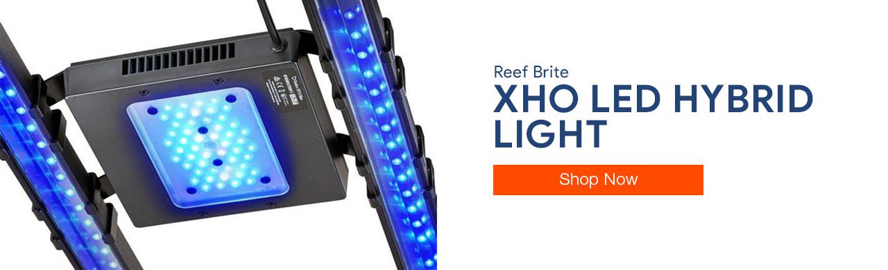 Shop X-Series LED Hybrid Light Kits