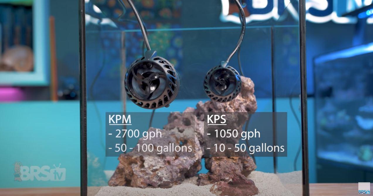Aqamai KPS and KPM size comparison