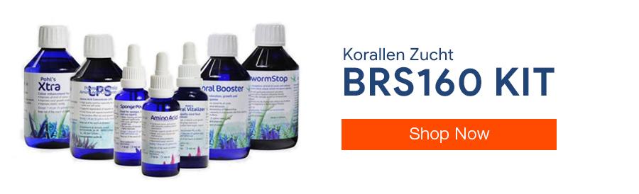 Buy Korallen Zucht BRS160 Additive Kit