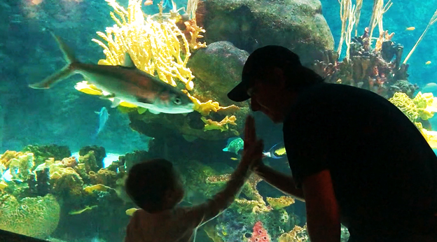 Ryan and family at a public aquarium