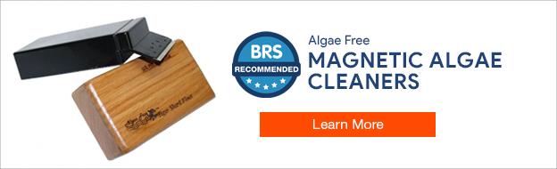 Algae Free Magnetic Aquarium Cleaners