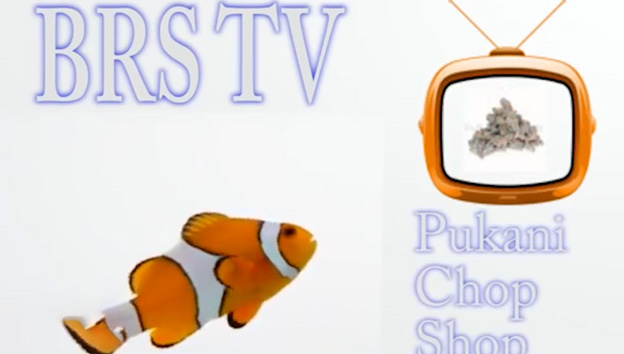 BRStv video title screen from the early days