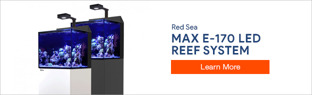 Red Sea E170 Aquarium