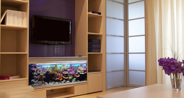 Reef tank in TV room