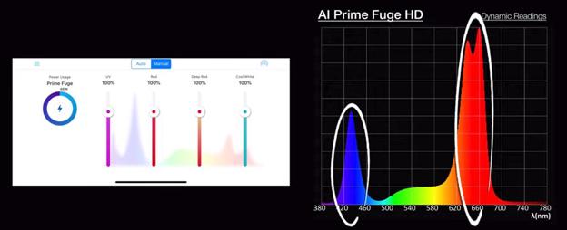 Spectrum Graph 1