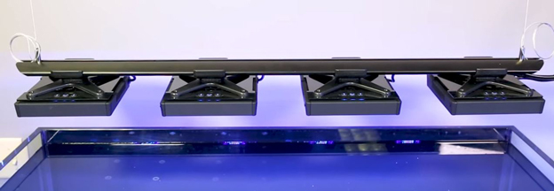 Radion XR15 LED light rack over BRStv test tank