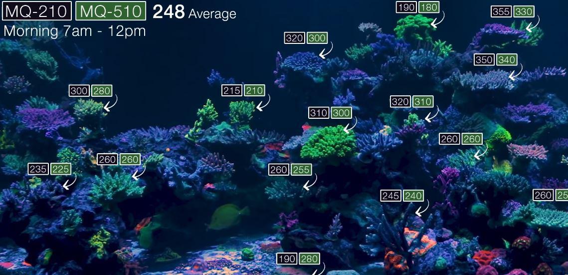 PAR values in WWC display tank