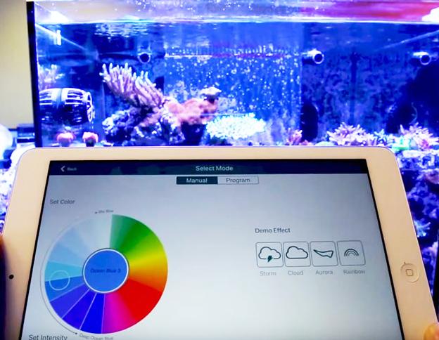 Using Kessil App to program LED lights on a tablet