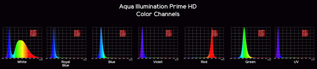 AI Prime Spectrum Graph