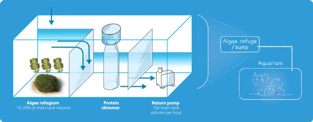 Triton Method Refugium/Sump Diagram