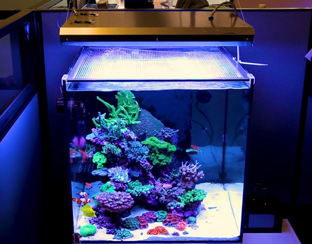 ATI Fixture over reef tank