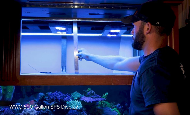 Randy measuring mounting height on WWC 500 gallon SPS display tank