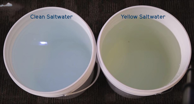 Clean and yellow saltwater in white buckets