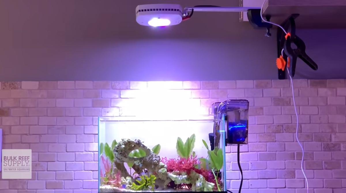 Aqua Illumination Prime Freshwater LED