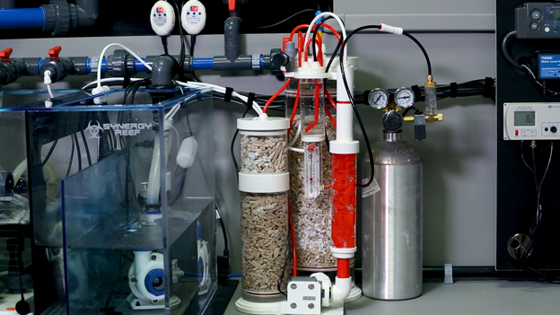 Vertex RX-6D Calcium Reactor set-up