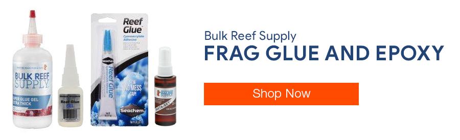 Shop Frag Glue