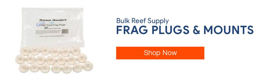 Shop Frag Plugs and Mounts