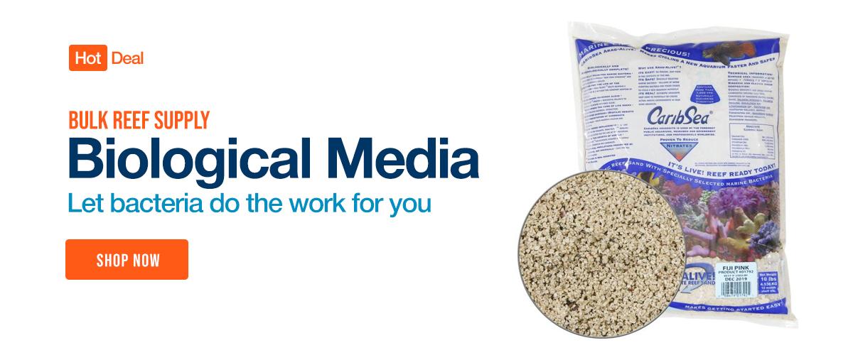 Shop Biological Filter Media