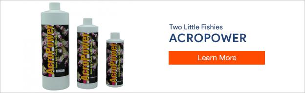 AcroPower Amino Acid Formula