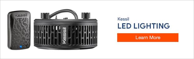 Kessil LED Lighting