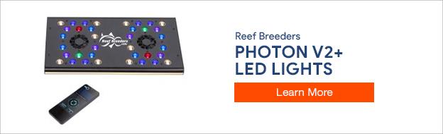 Reef Breeders LED Lights