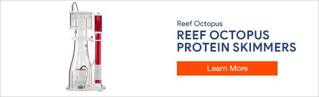Reef Octopus Protein Skimmers