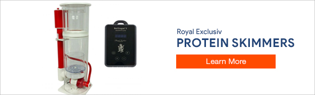 Royal Exclusiv Protein Skimmers
