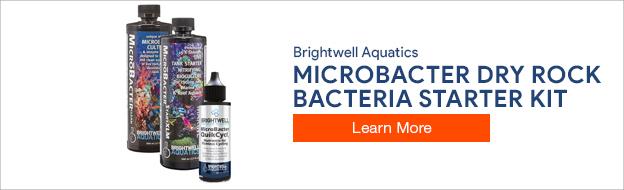 Microbacter Dry Rock Bacteria Starter Kit - Brightwell Aquatics