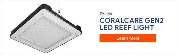 Philips Coral Care LEDs