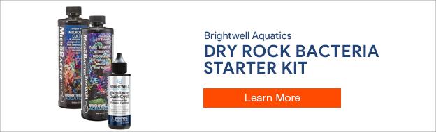 Brightwell Aquatics Dry Rock Starter Kit