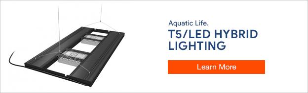 Aquatic Life T5/LED Hybrid Lighting