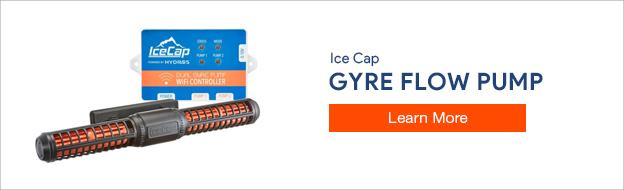 Ice Cap Gyre