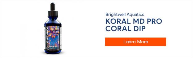 Brightwell Aquatics Koral MD Pro