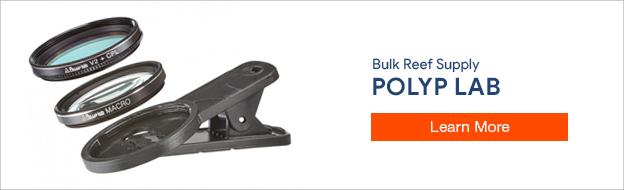PolypLab Phone Lens
