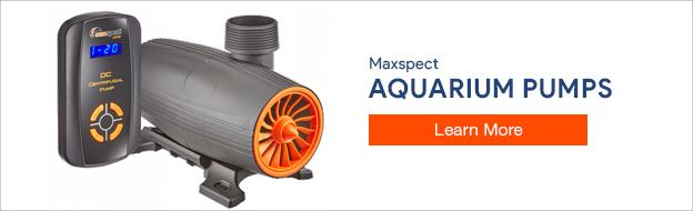 Maxspect Water Pumps