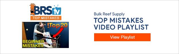 Top Reefing Mistakes Playlist YouTube