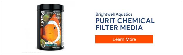 Brightwell Aquatics Purit Filter Media