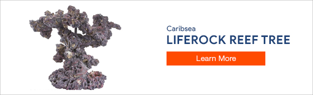 Caribsea Liferock Reef Tree Kit