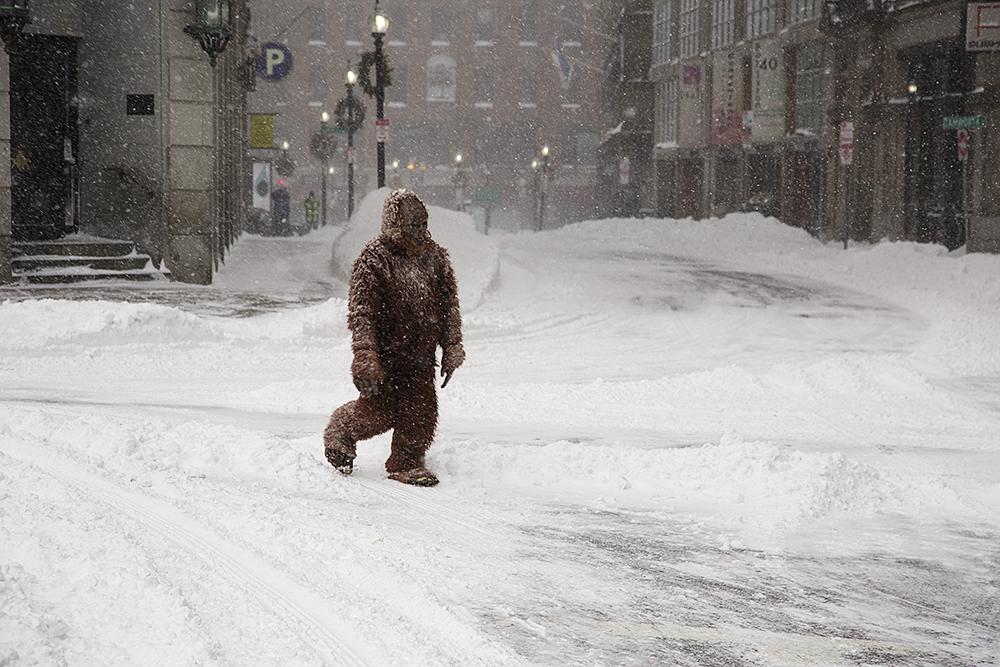 1422412390 snowstorm bushell 01272015 0052.jpg