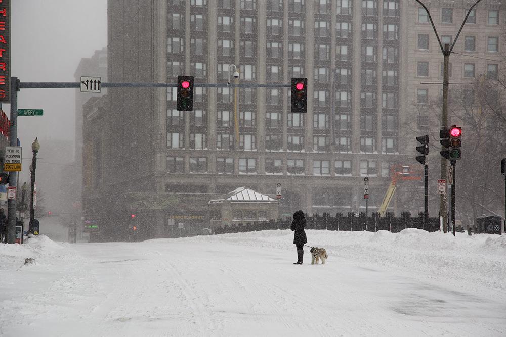 1422412419 snowstorm bushell 01272015 0053.jpg