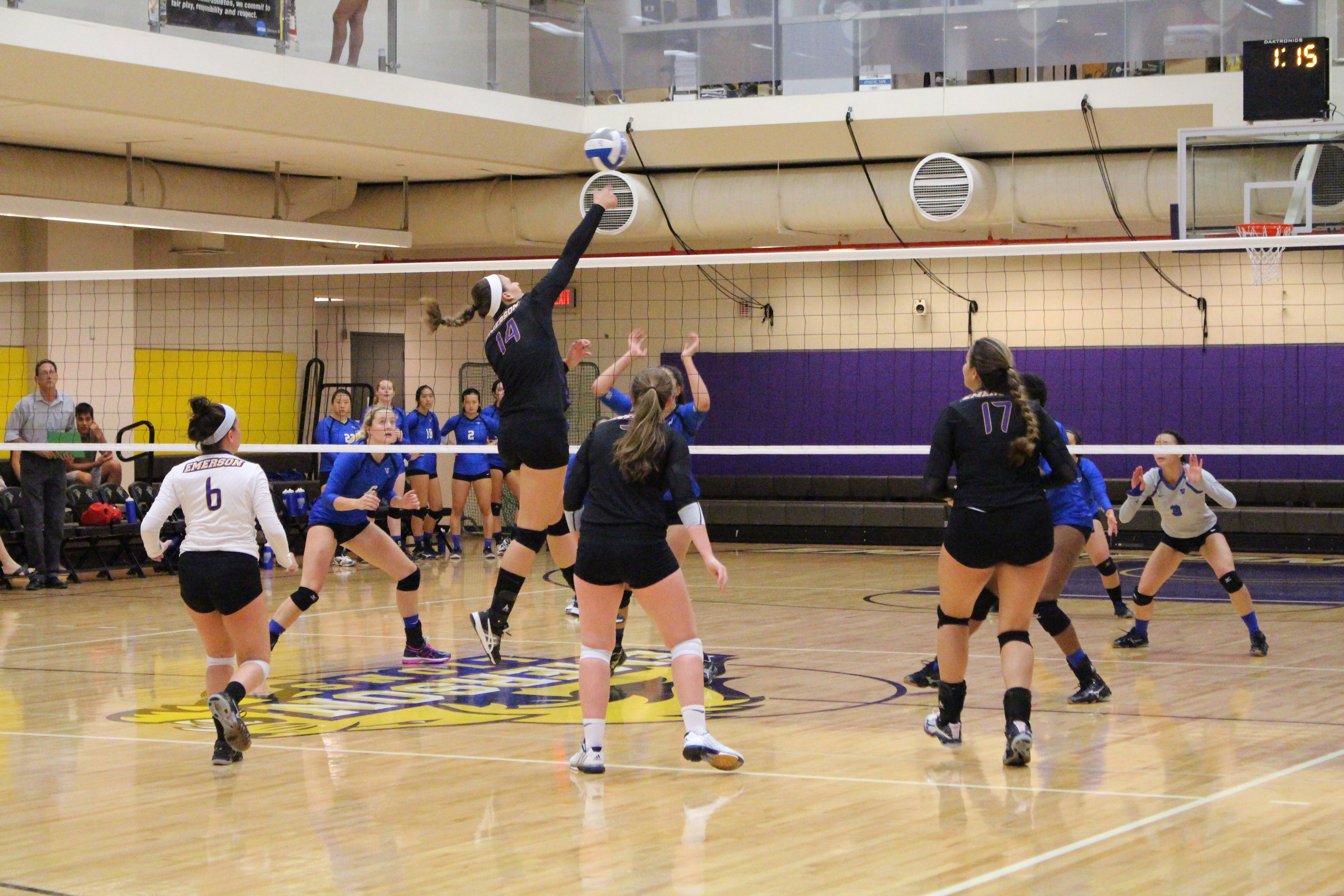 1477538354 volleyball2 for web.jpg