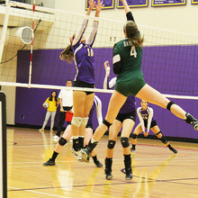 Thumb 220 1381986862 volleyball3 roden vertical.jpg