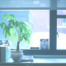 Thumb 220 1392276643 gardenweb hartono.jpg