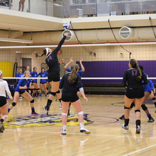 Thumb 220 1477538354 volleyball2 for web.jpg
