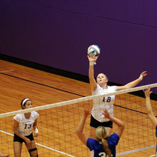 Thumb_220_volleyball_ally
