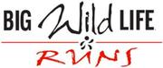 Big Wild Life Runs