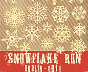 Dublin Snowflake Run