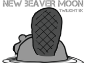 New Beaver Moon Twilight 5k