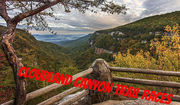 Cloudland Canyon 12 mile/50 mile