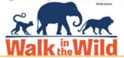 Walk in the Wild